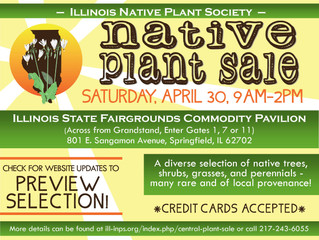 Purchase Native Plants and Further Conservation Efforts in Central Illinois!
