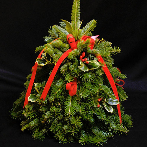 Balsam Fir Mini Tree Centerpiece