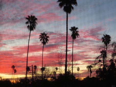 Sunrise, Jan 27th