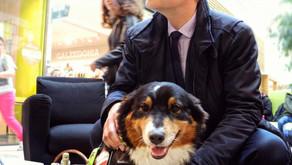 FREIHAUS 2020-11: Hunde, die Corona riechen