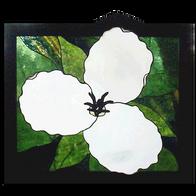 White Flowering Trillium