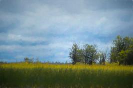 Edge of the River, Ontario