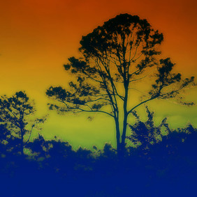 Silhouette Sunset in Blues & Oranges