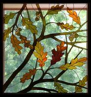 Oaks & Acorns in Fall