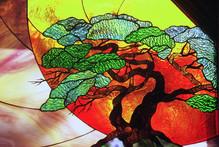 Detail, Torrey Pines