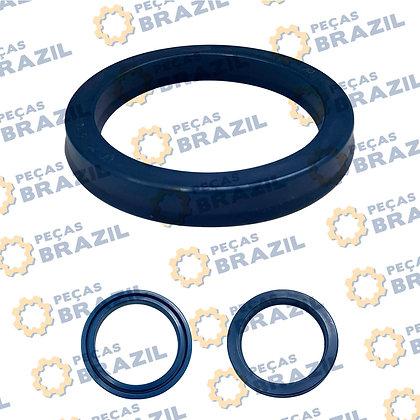 Gaxeta 75x95x12 / 11b0230 PB33876 / Peças Brazil