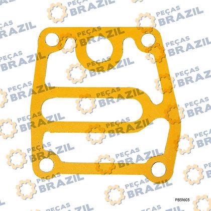 W018101631 / Junta YTO / PB31603 / Peças Brazil / R430001 / SP113883
