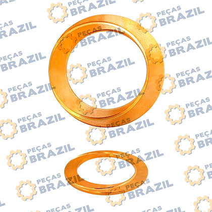 SP100303 / Arruela De Bronze Dif. ZF / PB31913 / Peças Brazil / 4061310164 / 4110000045066 / 119330A1
