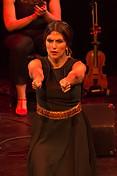 Liviana Dance - Flamenco Borealis