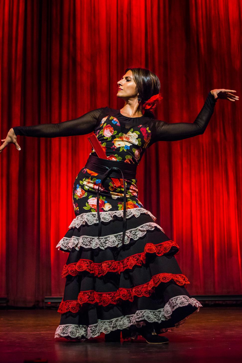 Flamenco Borealis por Mariana