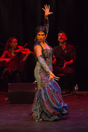 Al Andalusi - Flamenco Borealis