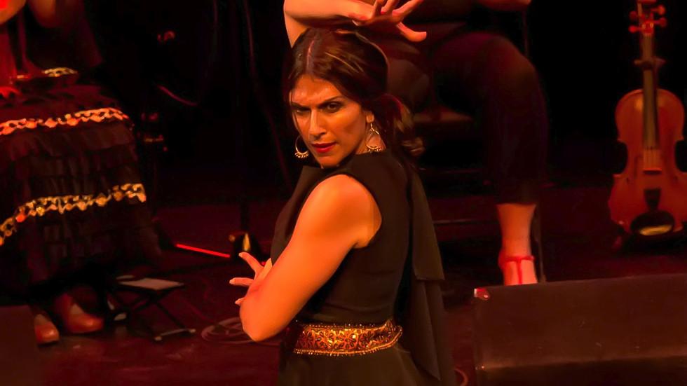 "Flamenco Borealis at the ""Persephone"""