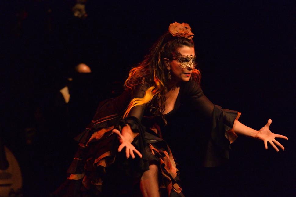 "Flamenco Borealis in the ""Ancient Elements"""