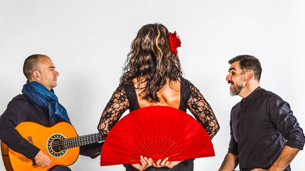 Flamenco fan in dancing