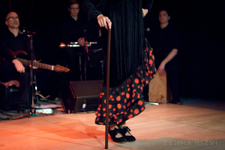 Flamenco cane dance