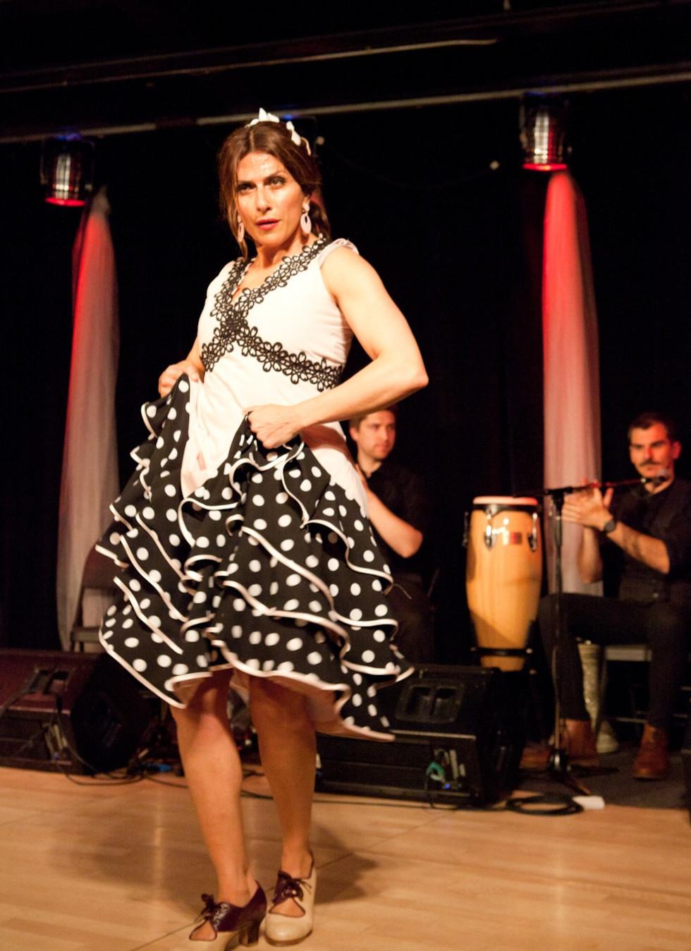 Flamenco Borealis Por Alegrias