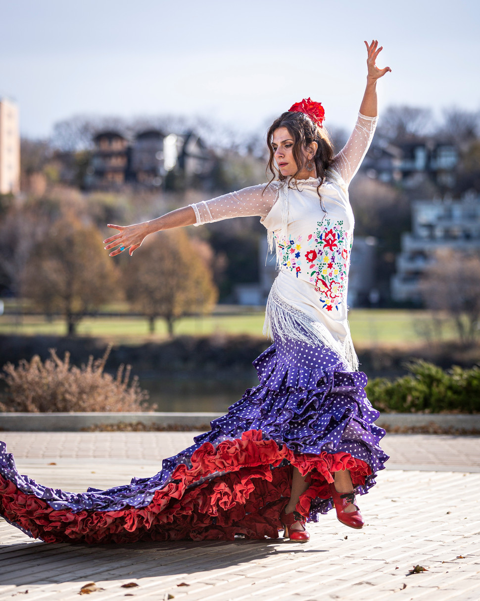 Flamenco Borealis Bata movements