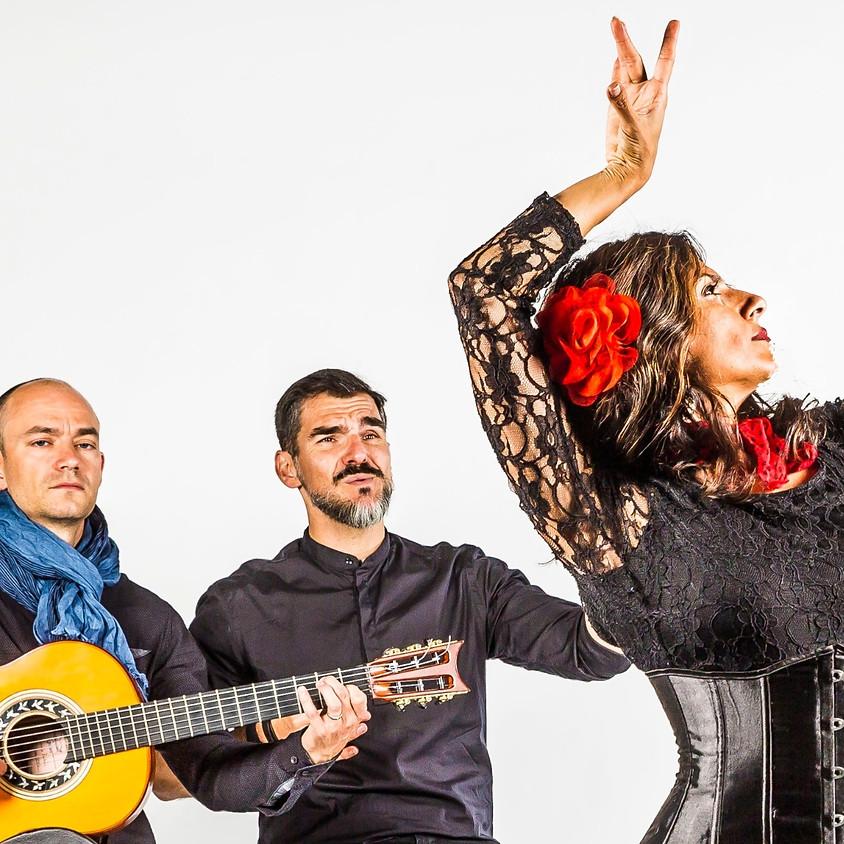 "Flamenco Borealis present ""Alas"""