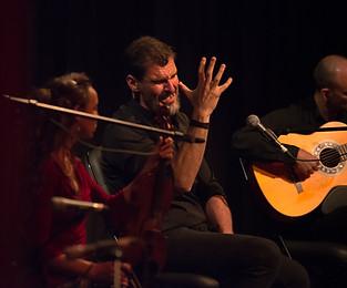 Celedonio Garrido - Flamenco Borealis