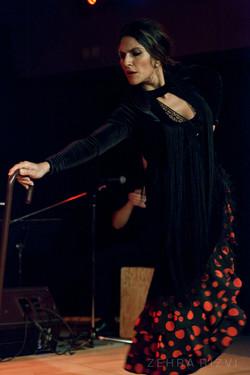 Flamenco baston