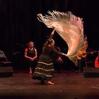 Flamenco shawl dance - Flamenco Borealis