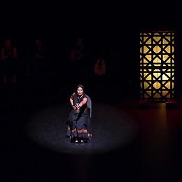 Flamenco chair dance - Lina Kazan of Flamenco Borealis