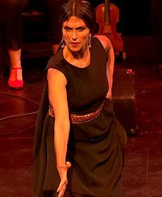 Flamenco Borealis Al Andalusi