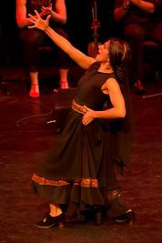 Flamenco dancing - Flamenco Borealis