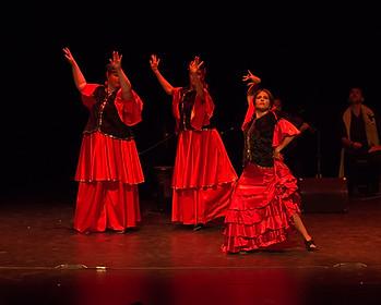 Flamenco Arabe Lamma Bada - Flamenco Borealis