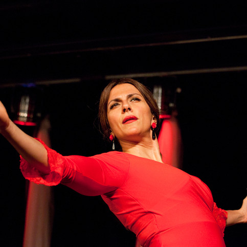 Flamenco Borealis por Cana