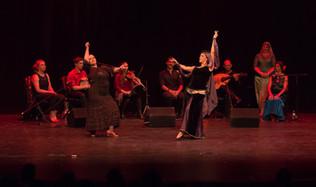 Fusion Arabo Flamenco - Flamenco Borealis