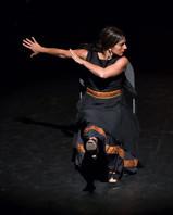 Flamenco chair dance - Flamenco Borealis