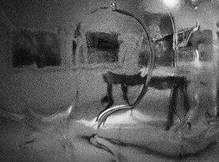 HiloMur bio (1).jpg