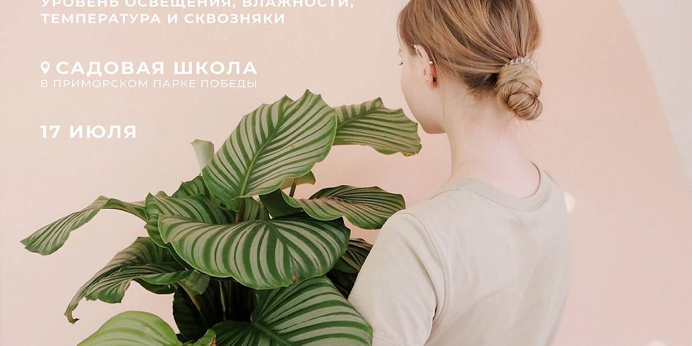 """Лекция """"Подбор растений. Уровень освещения, влажности, температура и сквозняки"""""""