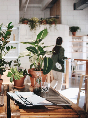 Also in Futura you can watch our terrariums - both in small bottles and large. We made small terrariums with Arabica inside, which is very similar to the fact that the bistro prepares delicious pastries, which makes it so pleasant to drink coffee with