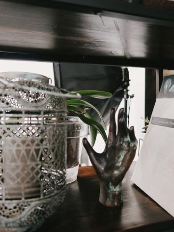 Большинство растений переехало в горшки из натуральной серой неглазурованной глины, однако, растения, требующие других условий содержания были посажены в подходящие конкретно им горшки. Например, орхидея переехала в прозрачный пластиковый горшок и прозрачное кашпо