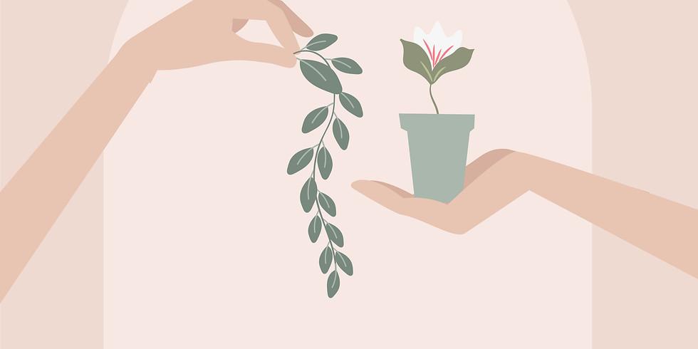 Обмен редкими растениями