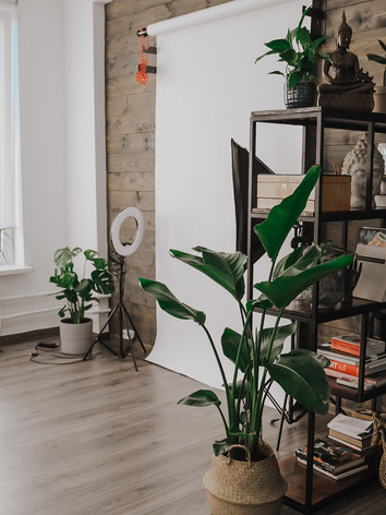 Озеленение и уход за растениями в тату-студии SASHATATTOING STUDIO в Санкт-Петербурге
