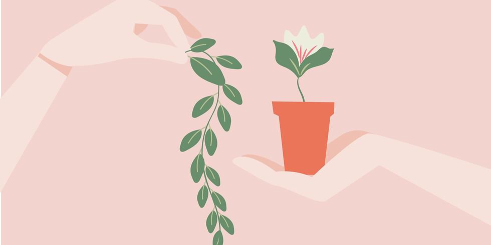 Обмен растениями