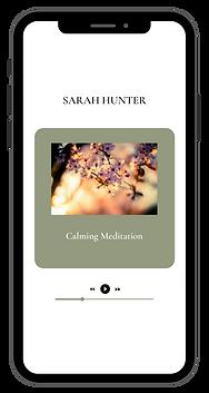 Sarah Hunter Desktop(12).png