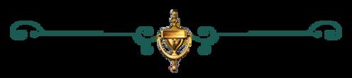YNN icon