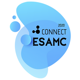 logo connect 2020.png