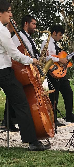 Jazz trio para recepciones, cocktails, corporativos
