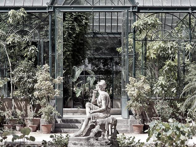 Orto botanico, Palermo, 2008