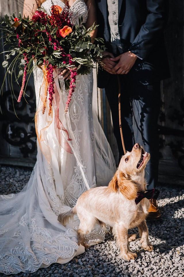 Alcumlow Wedding Barn - Dog friendly wedding venue