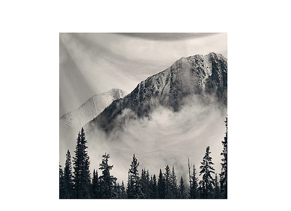 Chic trendy Nordic forest tapestry home decor dorms affordable free shipping