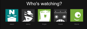 set up netflix profiles