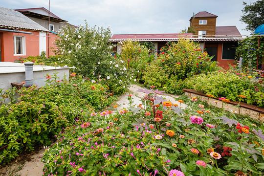 Сад во дворе гостевого дома