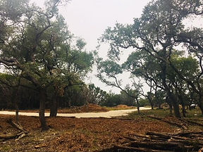 Wimberley Property For Sale