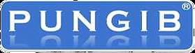 PUNGIB_LOGO_100-removebg-preview (1).png